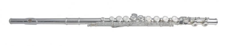 Flaut in Mi Armstrong FL-650E