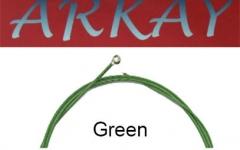 Set corzi chitara electrica Aurora Arkay Electric 10-46 Green
