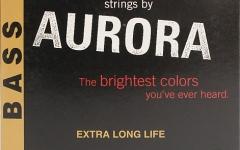 Aurora Bass 45-105 Nitro Lime