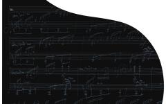 Bösendorfer 214VC Beethoven Black