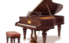 Bösendorfer 225 Chopin Edition