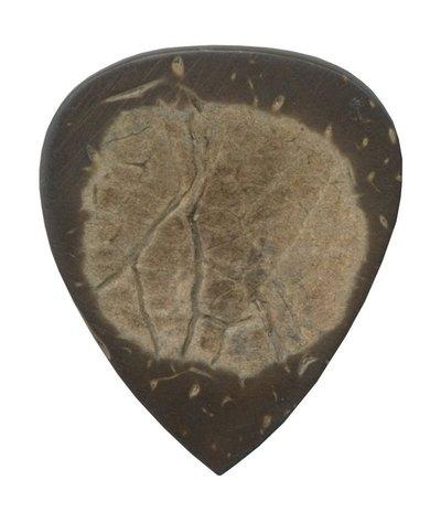 Pana de chitara din lemn Clayton Exotic Nuca cocos