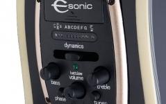 Epiphone PR-5E Florentine Cutaway