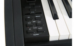 Gewa Gewa DP 120G Black