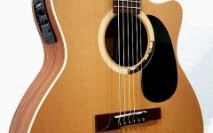 Chitara electro-acustica jumbo Hora Reghin Jumbo Solo Palisandru EQ