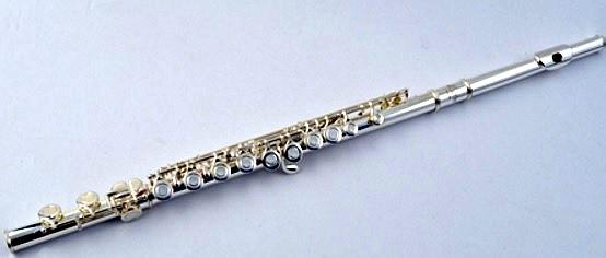 Flaut ?n Do Lucien FL-510S