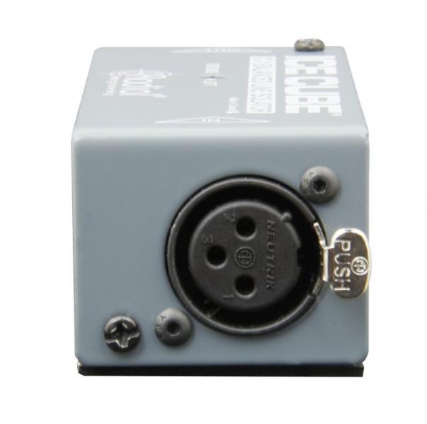 Radial Engineering IC-1 IceCube