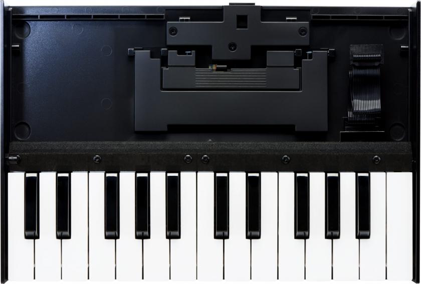 Roland Boutique K-25m Keyboard
