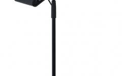 stativul de microfon si microfonul sunt accesorii optionale.