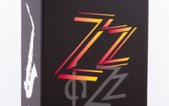 Vandoren ZZ Alto Sax 2