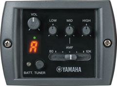 Yamaha APX 500 III Nat