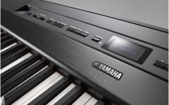 Yamaha P-515 B